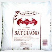 Insect Bat Guano