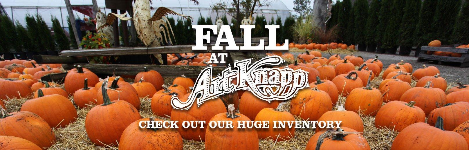 AK-Fall-Banner-2015.jpg